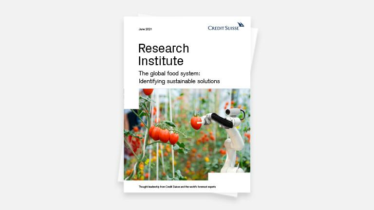 img-report-research-institute-the-global-food-system