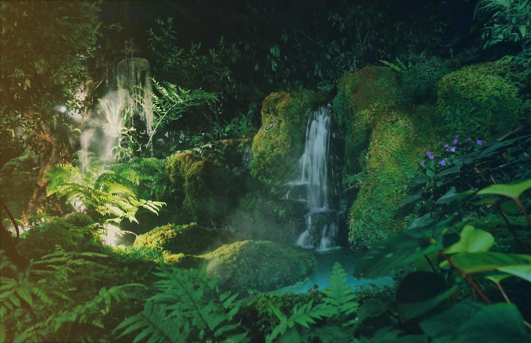 CRS MCAA: CRS Information Exchange Beziehungen - oder willkommen im Dschungel